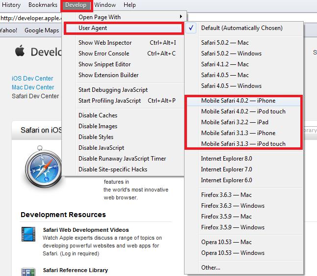 Testing ASP NET Web Application in iPhone Simulator